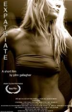 Expatriate (2010) afişi