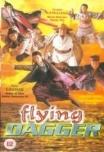 Flying Dagger (1993) afişi