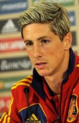 Fernando Torres profil resmi