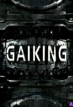 Gaiking (1) afişi