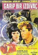 Garip Bir izdivaç (1965) afişi