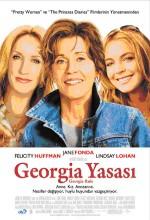 Georgia Yasası (2007) afişi