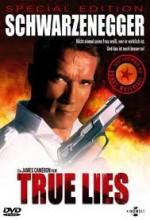 Gerçek Yalanlar (1994) afişi