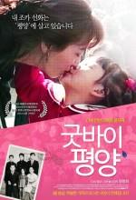 Goodbye, Pyeongyang (2009) afişi
