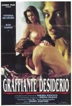 Graffiante Desiderio (1993) afişi
