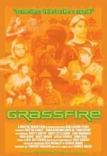 Grassfire (2003) afişi