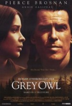 Gri Baykuş (1999) afişi