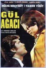Gül Ağacı (1967) afişi