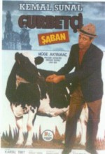 Gurbetçi Şaban