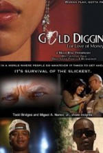 Gold Diggin : For Love of Money (2008) afişi