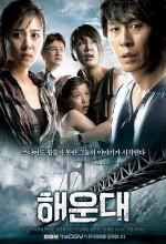 Tsunamiden Kaçış (2009) afişi