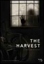 Hasat (2013) afişi
