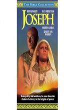 Hazreti Yusuf (1995) afişi