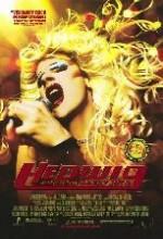 Hedwig Ve Kızgın çıkıntısı (2001) afişi
