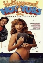 Hollywood Hot Tubs 2 (1990) afişi