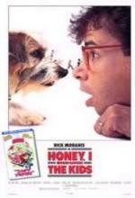 Honey, I Shrunk The Kids (1989) afişi