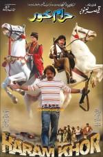 Haraamkhor (2014) afişi
