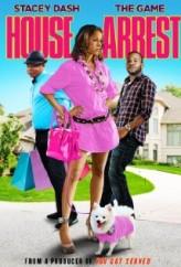House Arrest (ı) (2010) afişi