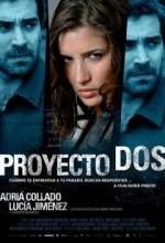 Ikinci Proje (2008) afişi