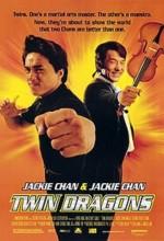 İkiz Ejderler (1992) afişi