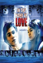 In The Name Of Love (2008) afişi