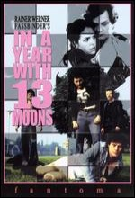 In A Year With 13 Moons (1978) afişi