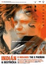 Indián a Sestricka (2006) afişi