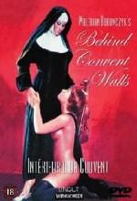 Within the Convent (1978) afişi