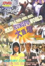 It's A Mad Mad Mad Kung Fu World (2000) afişi