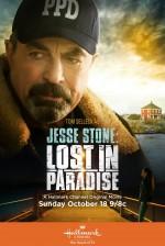 Jesse Stone: Lost in Paradise (2015) afişi