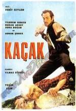 Kaçak (1968) afişi