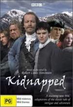 Kaçırılan (2005) afişi