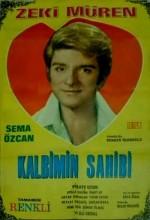 Kalbimin Sahibi (1969) afişi