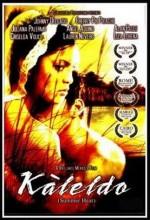Kaleldo (2006) afişi