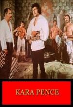 Kara Pençe (1973) afişi