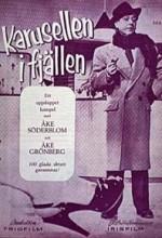 Karusellen I Fjällen (1955) afişi