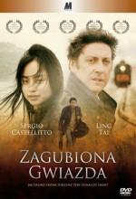 Kayıp Yıldız (2006) afişi
