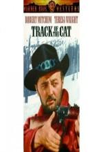 Kedinin izinde (1954) afişi