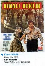 Kınalı Keklik (1969) afişi