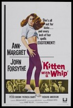 Kitten With A Whip (1964) afişi