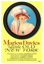 Küçük Yaşlı New York (1923) afişi