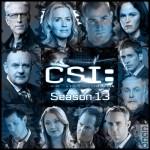 Kanıt Peşinde Sezon 13 (2013) afişi