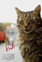 Kedi (2016) afişi