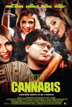 Kid Cannabis (2014) afişi