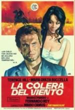 La Collera Del Vento (1970) afişi