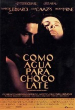 Like Water For Chocolate (1992) afişi
