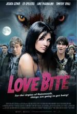 Aşk Isırığı (2012) afişi
