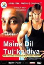 Maine Dil Tujhko Diya (2002) afişi