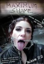 Maximum Shame (2010) afişi