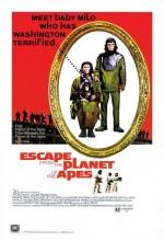 Maymunlar Cehenneminden Kaçış (1971) afişi